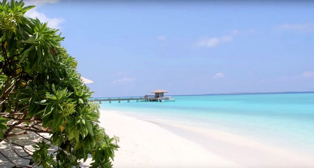 путевки на НГ 2018 на Мальдивы. The Barefoot Eco Hotel