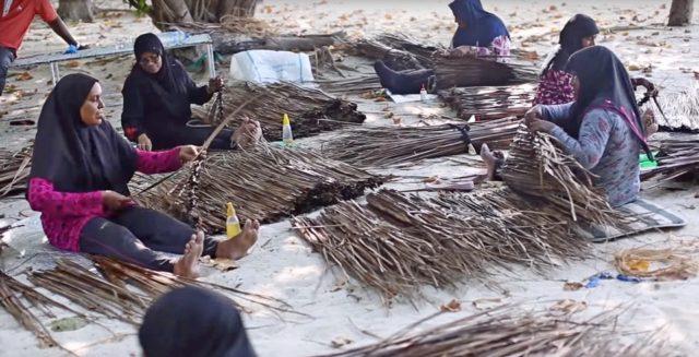 реальная жизнь на обитаемых островах