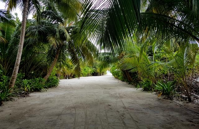 самый чистый локальный остров