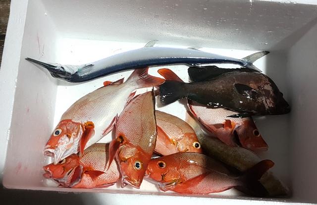 рыбы много и ее вам приготовят