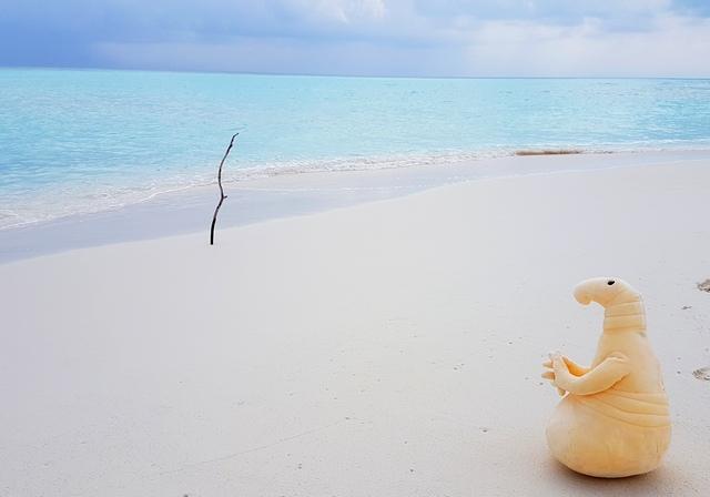 самостоятельно на Мальдивские острова дешево