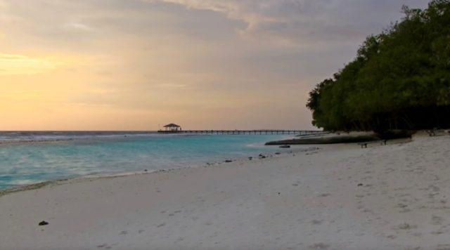 скидки на отель Royal Island resort