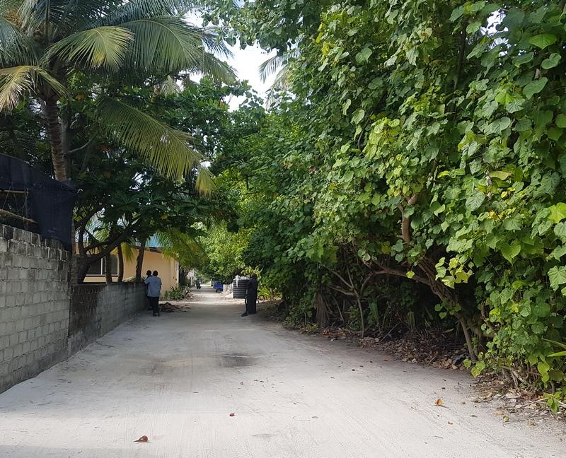 дорога на пляж на Дигура